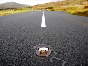 cats eye in the middle of the road