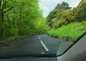 image from a car showing the scene in Ireland