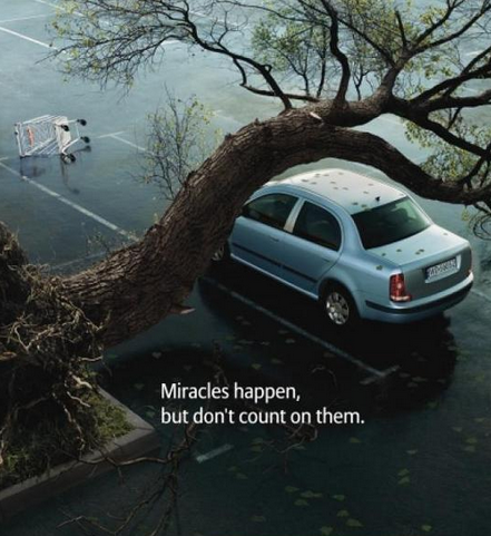 amusing image of a car almost being hit by a tree for a car insurance advert